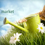 Шапка-баннер для сайта greenbelt-market.ru