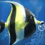 Анимированный gif баннер для рекламы аквариумов