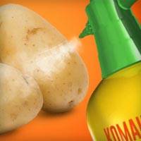 HTML5 баннер рекламы препарата Командор+ для обработки картофеля