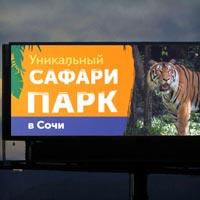 Рекламный ролик для сафари парка в Сочи